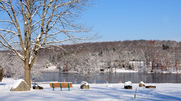 Green Lane Park hosts a Winter Trees walk on Saturday.