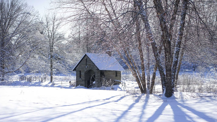Enjoy the outdoors at Morris Arboretum with their Saturday Winter Wellness Walks.