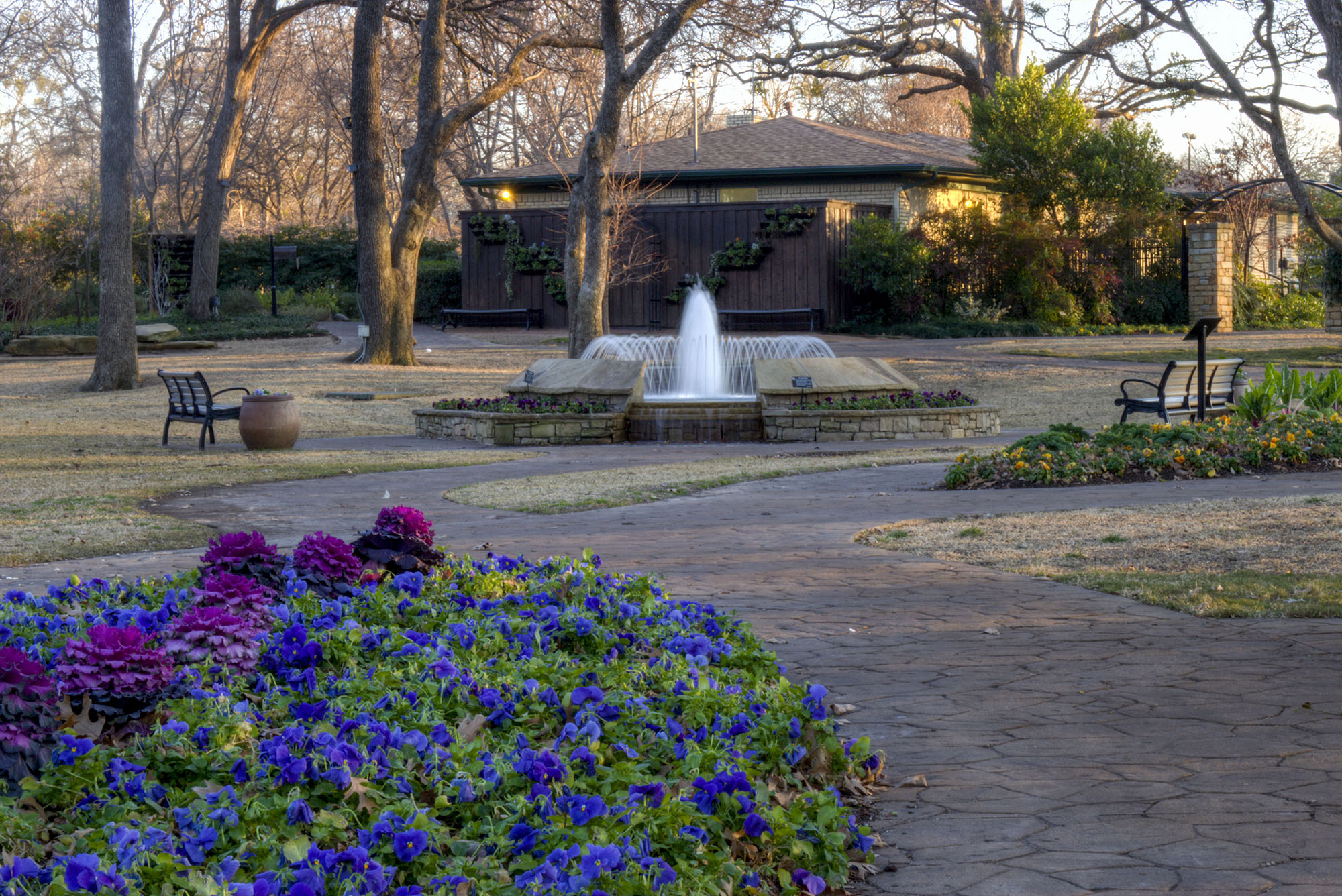 The Beauty of Grapevine's Botanical Garden
