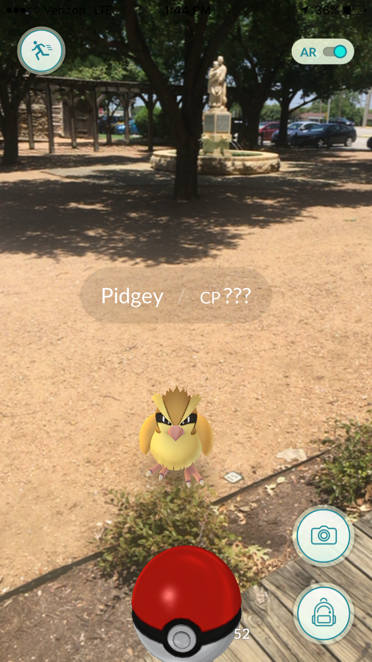 Capture Pidgey at Liberty Park near Messina Hof Winery