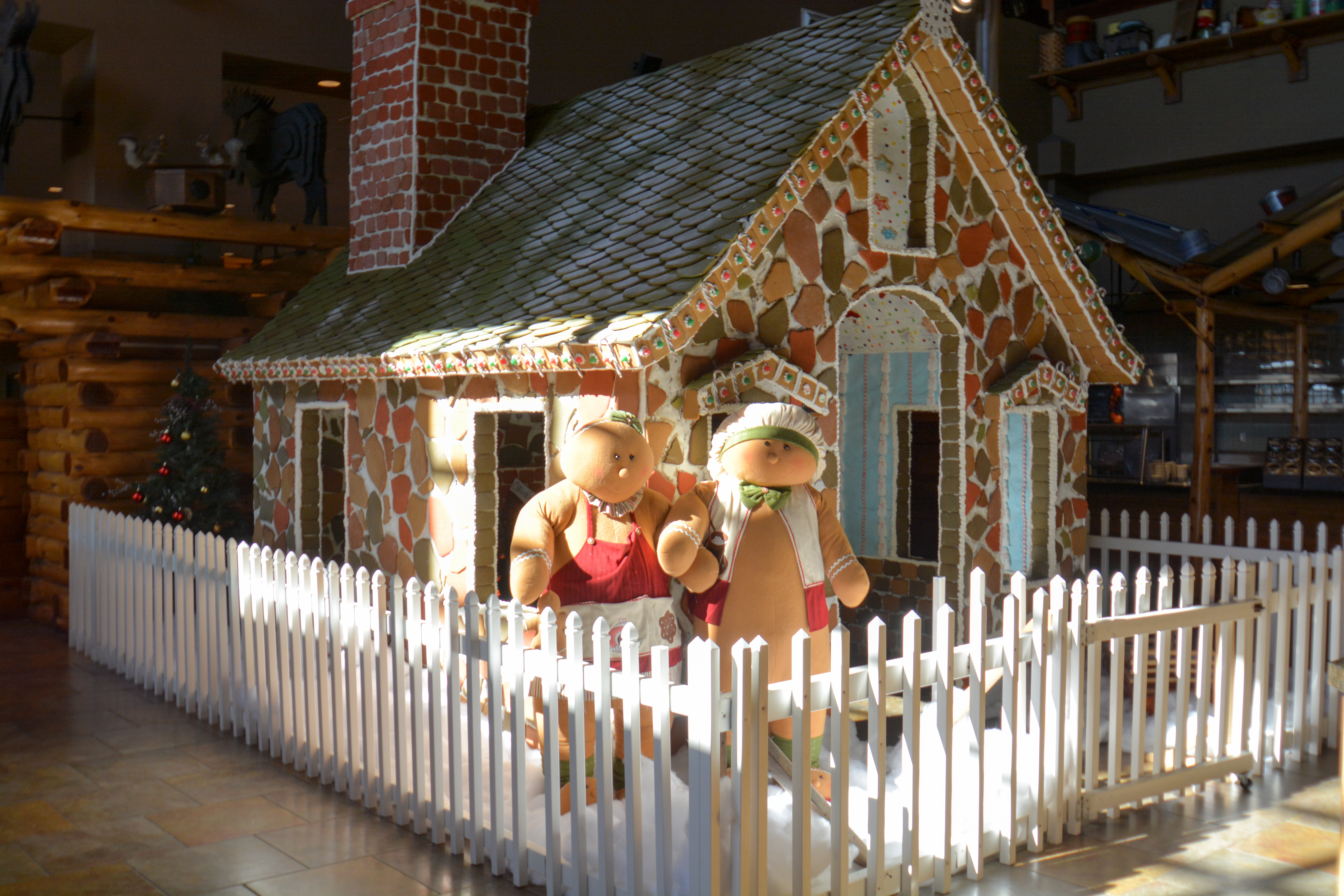 a look at the life size gingerbread house at great wold lodge in grapevine