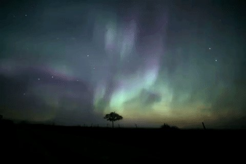 See the northern lights in Manitoba