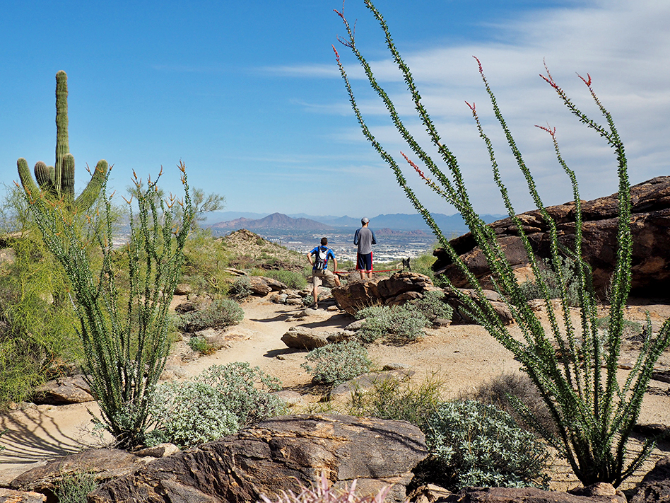 best hikes in phoenix south mountain
