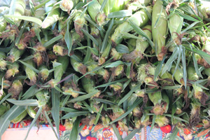 Carmel Farmers Market Corn