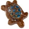 Ghyslain turtle