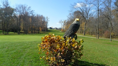Gray eagle fairway- Alan