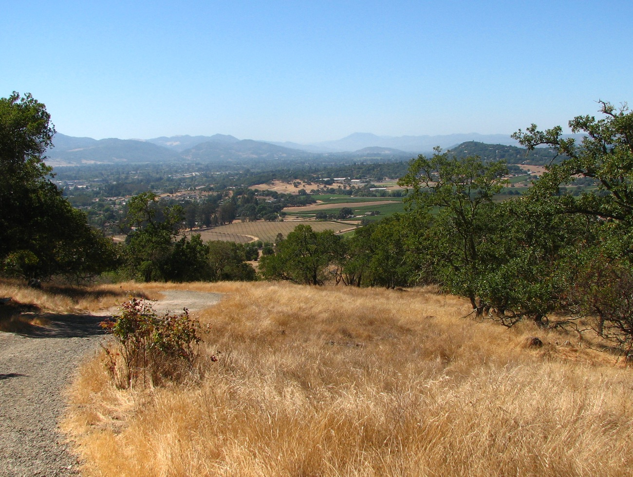 Biking Napa Valley Hills