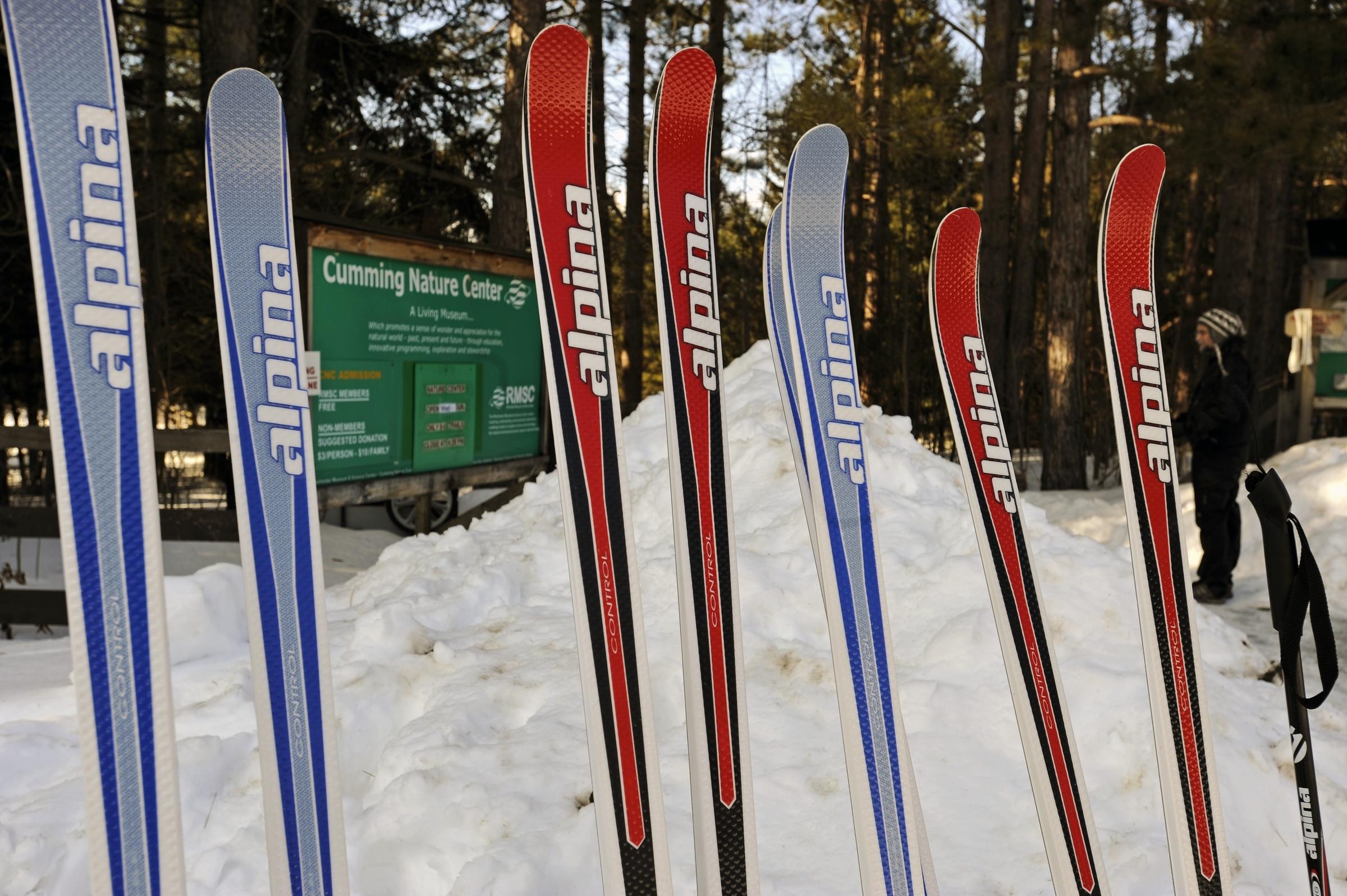 dog sledding & skijoring in ny | information & resources