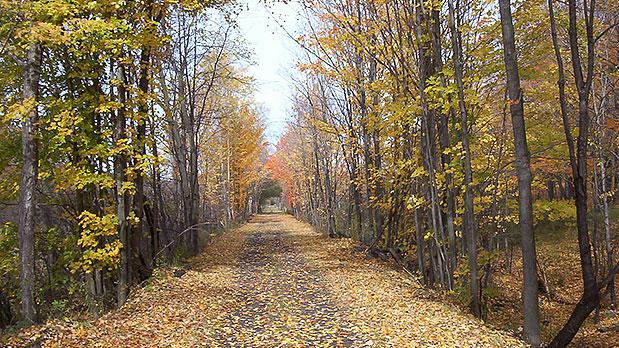 Catskills Scenic Trail