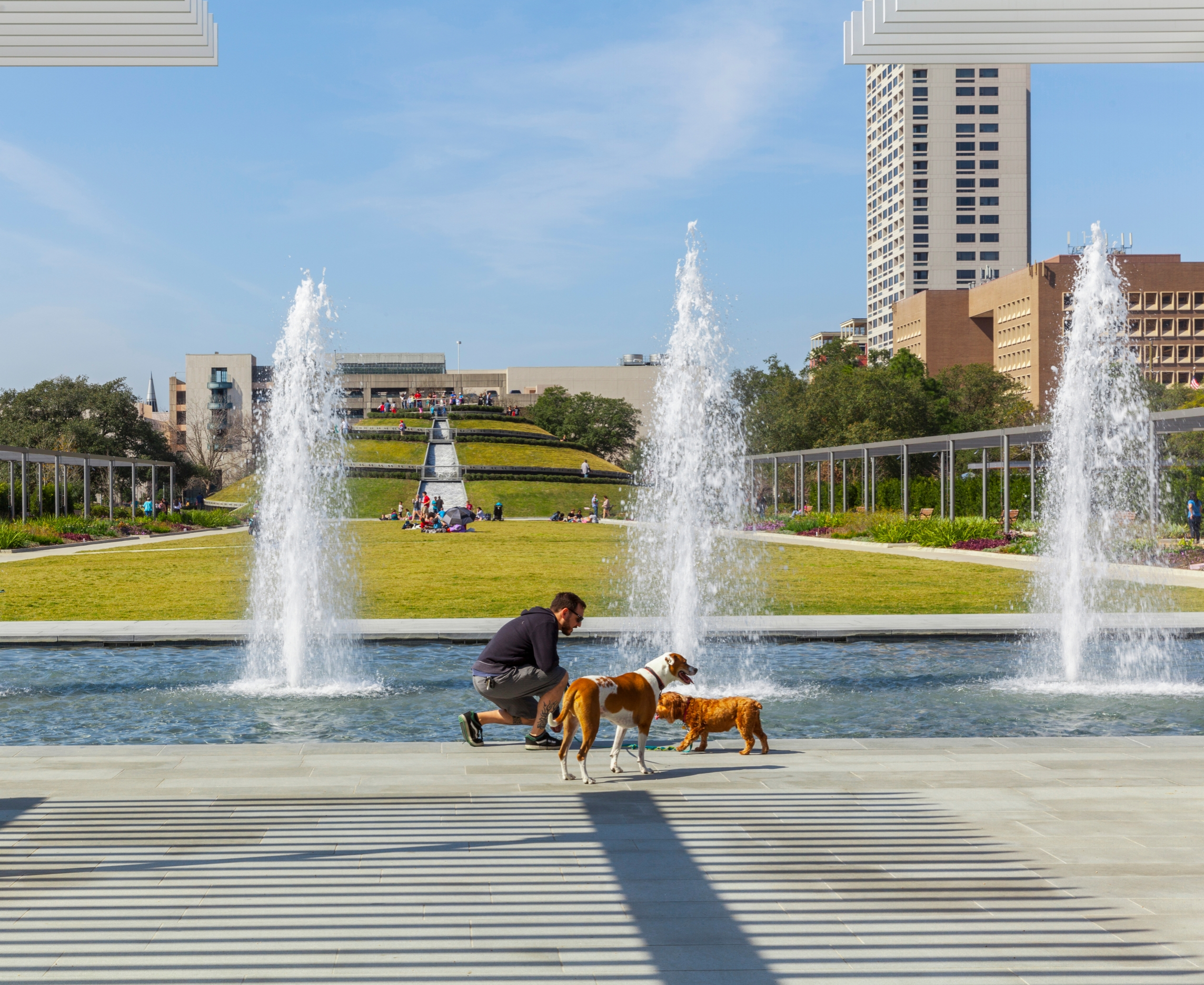 Man and dogs McGovern Centennial Gardens in Houston