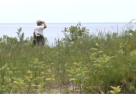 Dune steward scouts birds along the dunes of Eastern Lake Ontario at Black Pond Wildlife Management Area