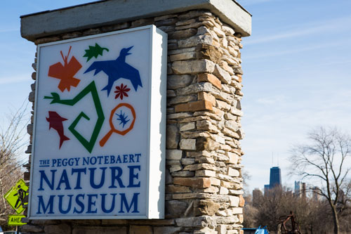 Peggy Notebaert Nature Museum