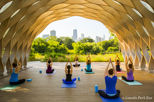 Yoga at Lincoln Park Zoo Chicago