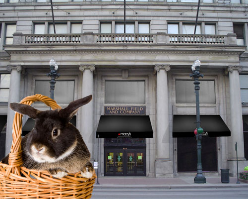Easter Bunny at Macy's