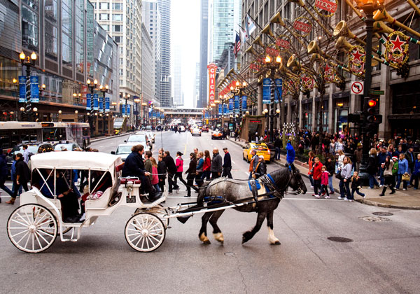 Horse Carriage Holidays