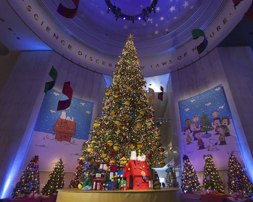 Museum of Science and Industry - Christmas Tree - Blog