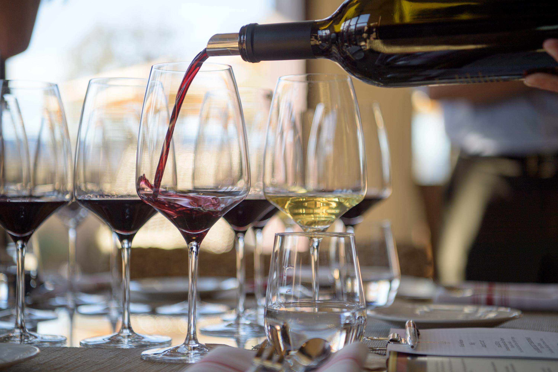Initiation oenologie vin rouge vin blanc team building