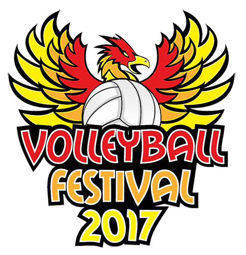 Volleyball Festival 2017