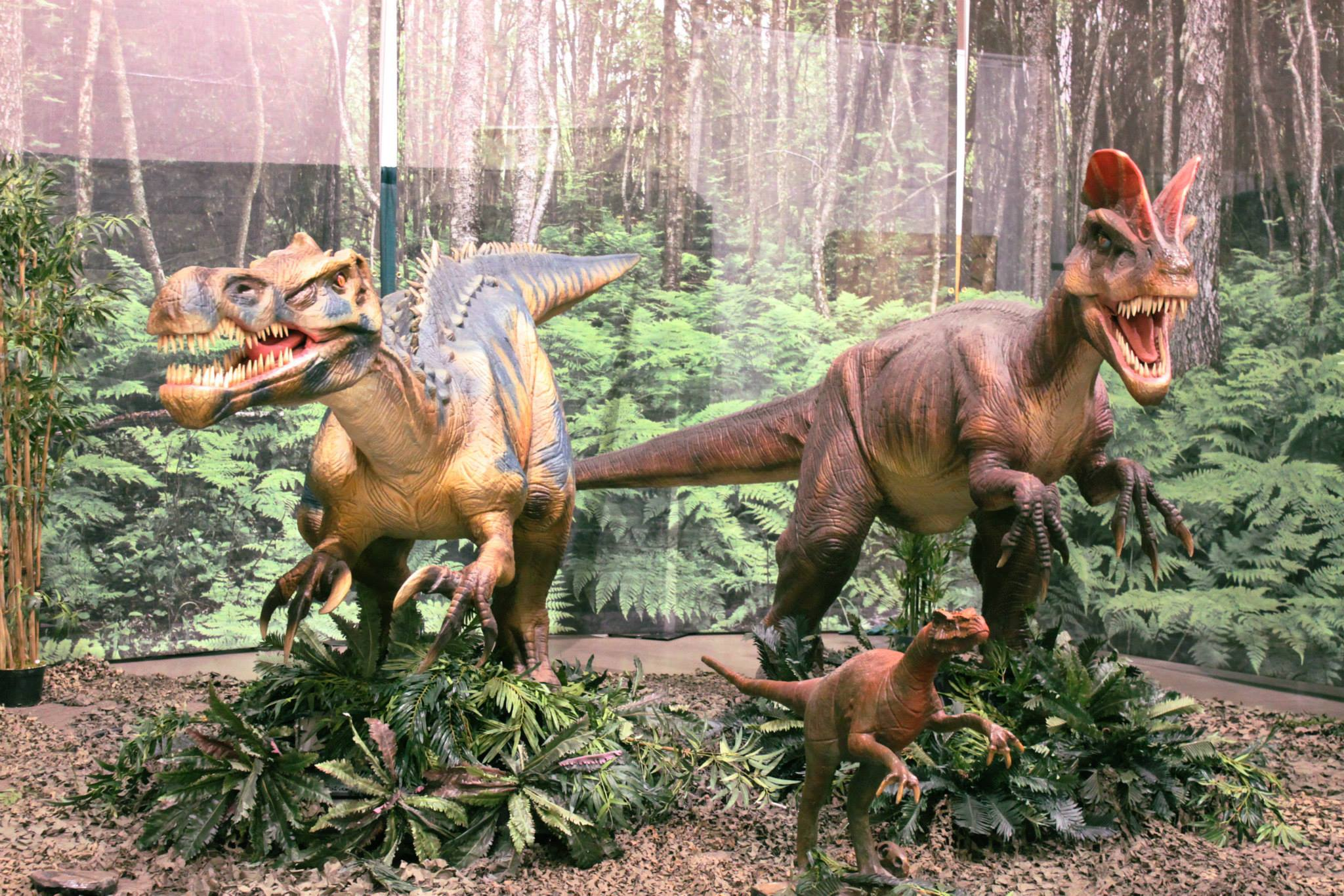 Discover the Dinosaurs is a sprawling exhibit of dinosaurs, fun and more at the Columbia Metropolitan Convention Center July 4-6, 2014.