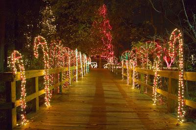 Lights Before Christmas Shine at Riverbanks