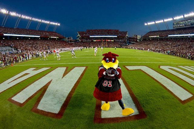 Gamecock football at Williams-Brice Stadium in Columbia, SC