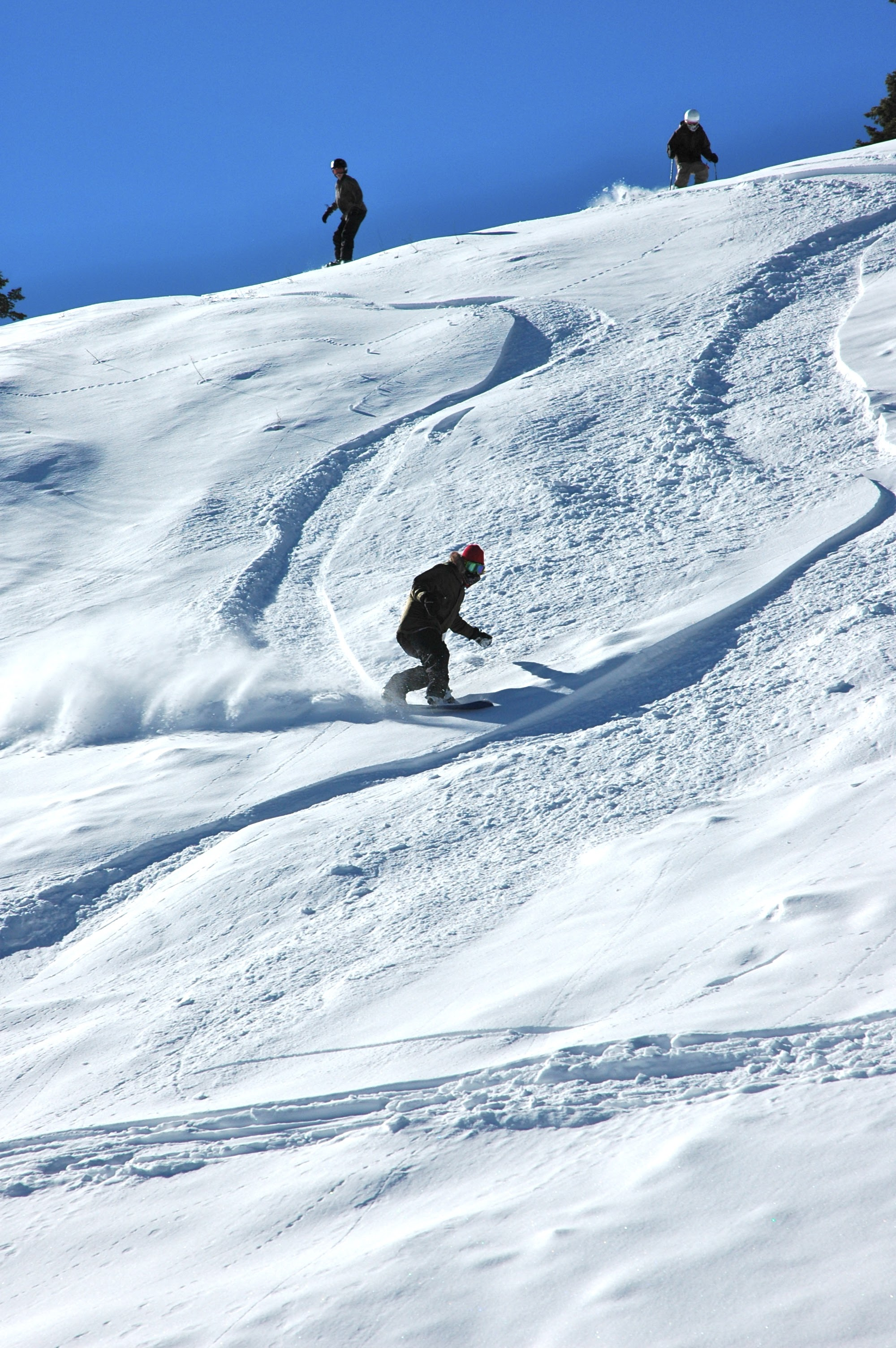 skiing in new mexico | new mexico ski resorts | visit albuquerque