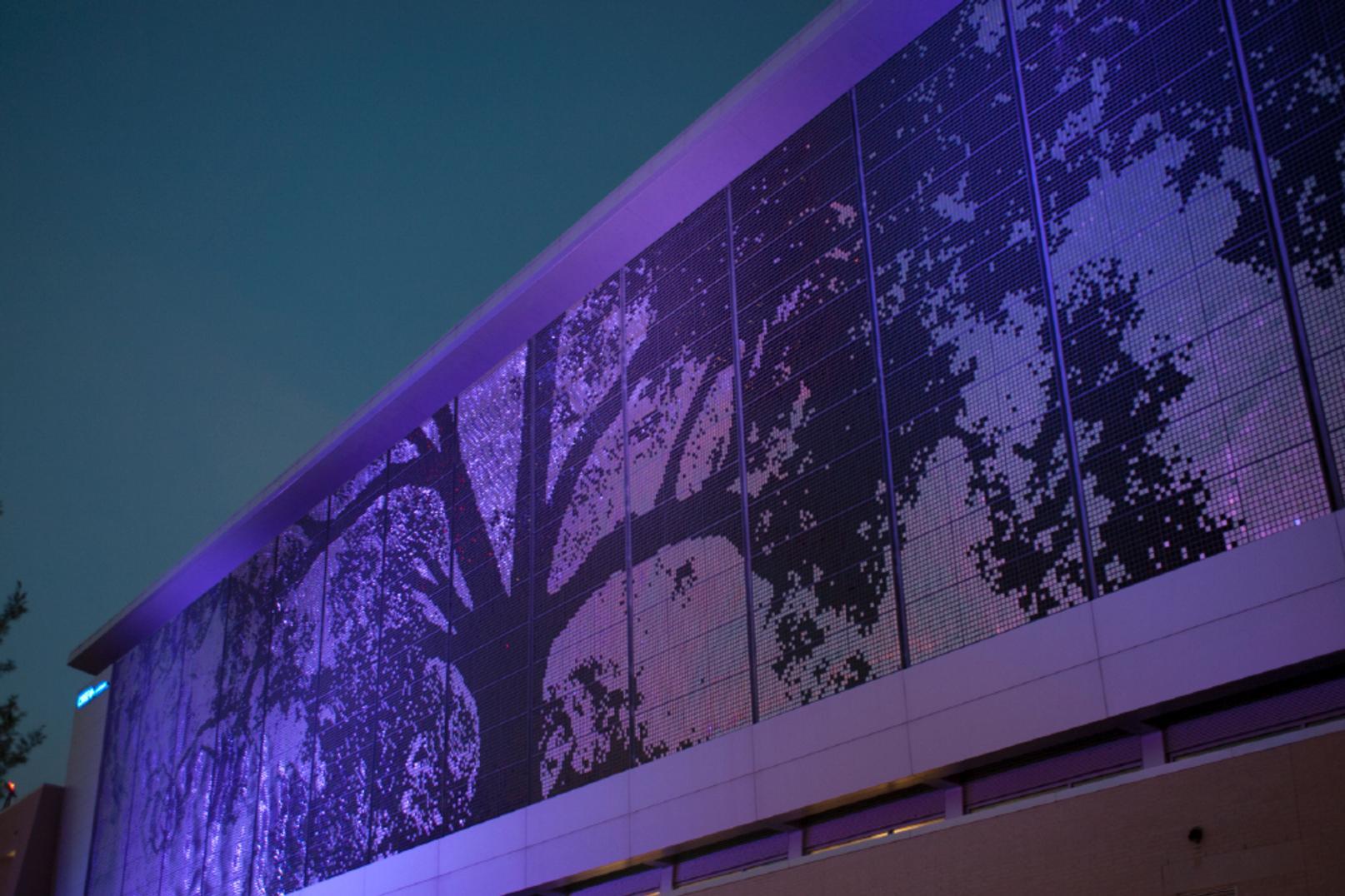 Cree Shimmer Wall