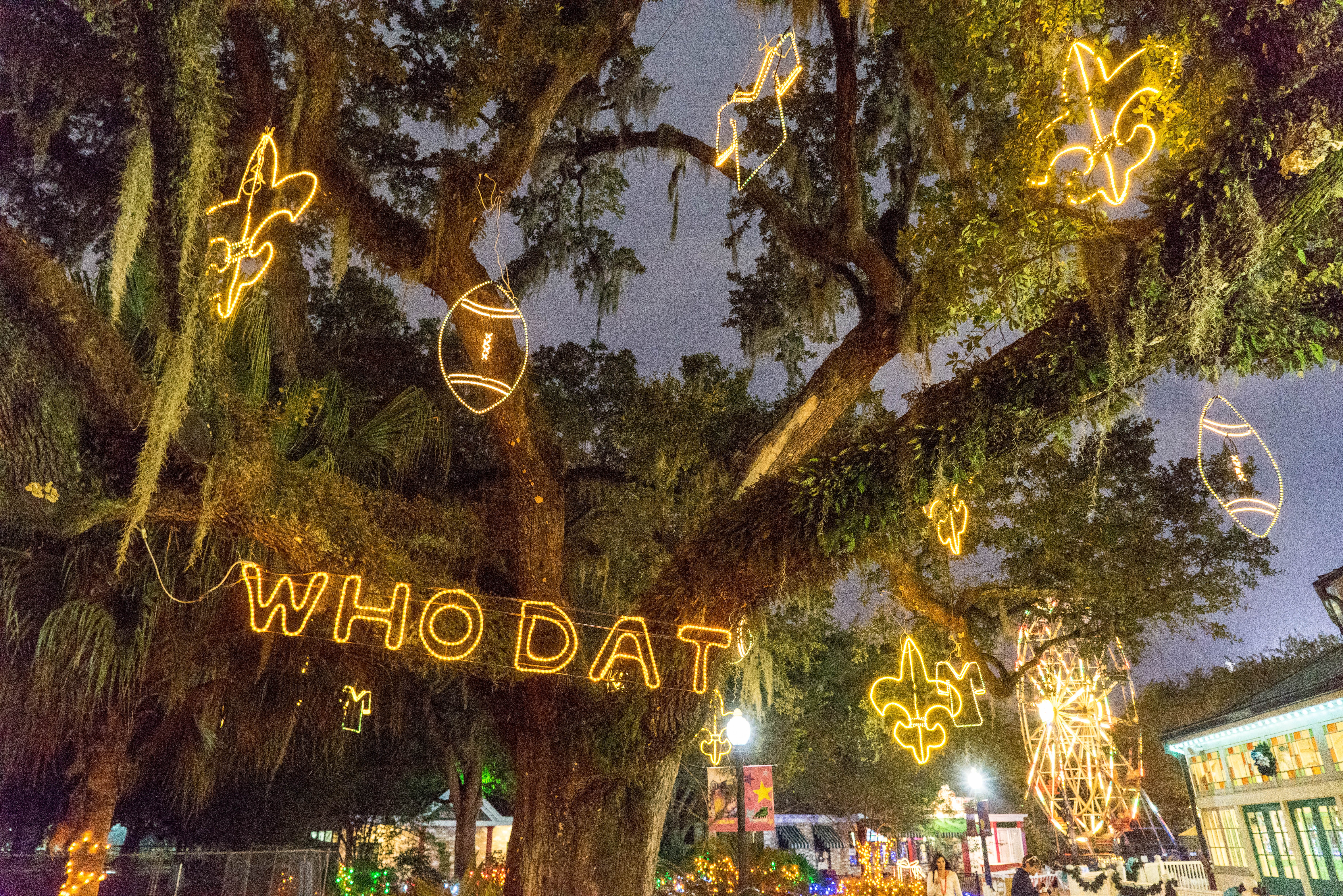 New Orleans words and Phrases