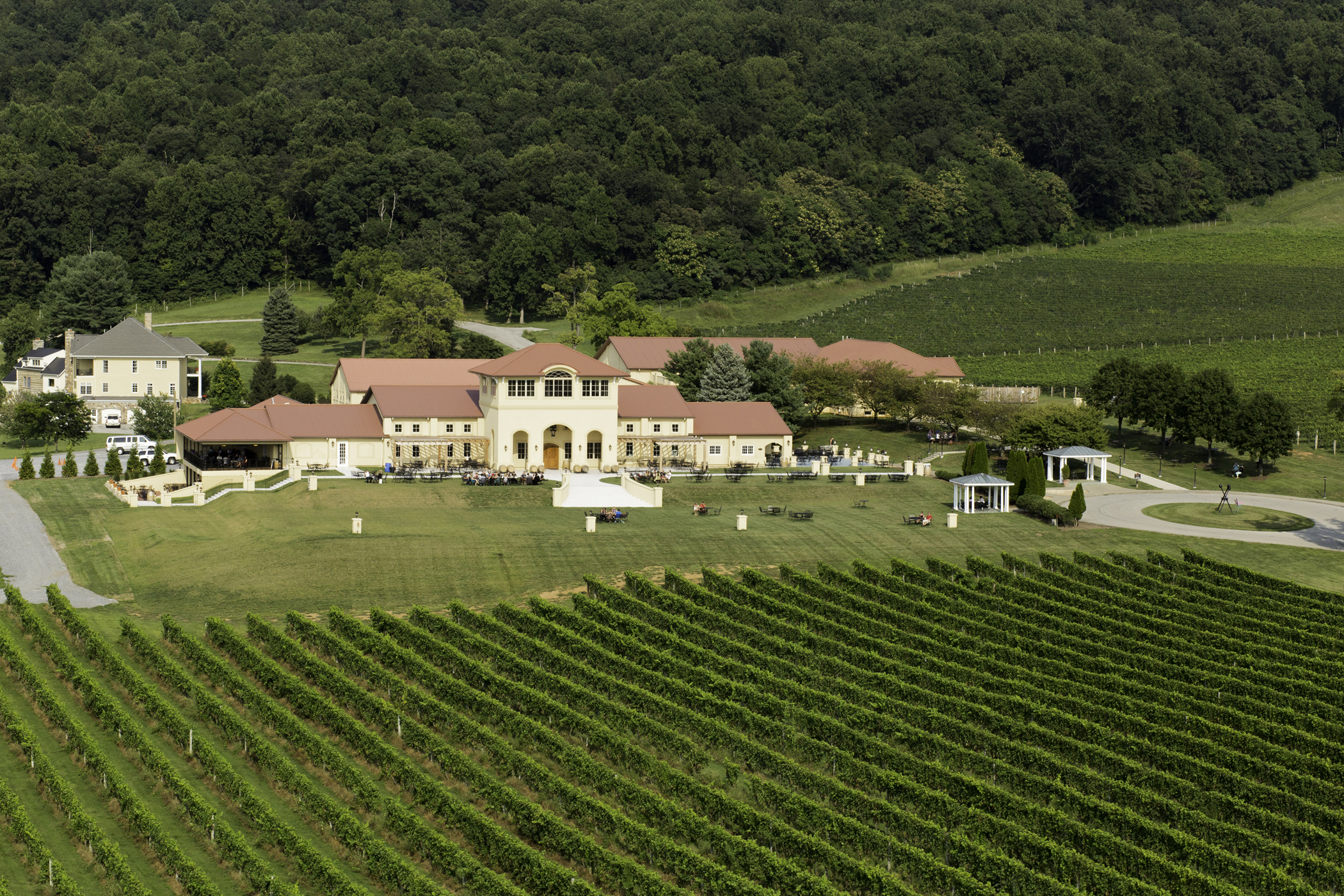 Wineries & wine tasting in loudoun county wine country