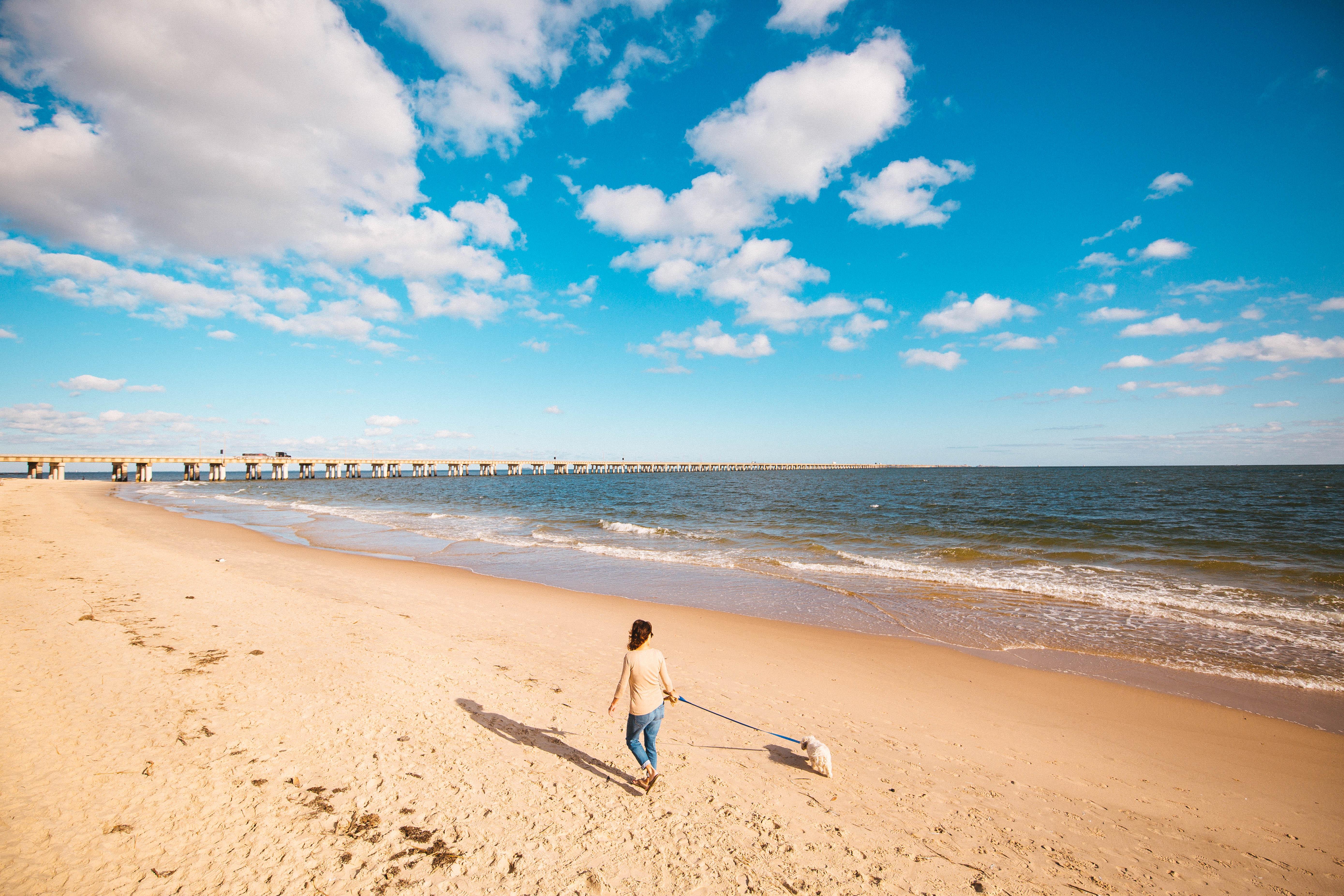discover chesapeake bay find hotels restaurants rentals