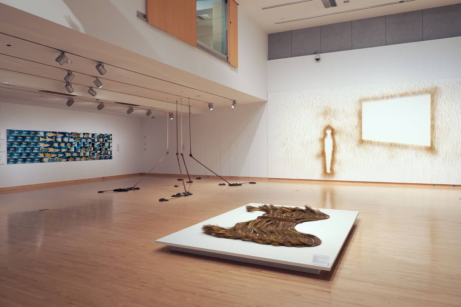 Brazil Phoenix Art Museum