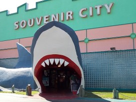 Souvenir City of Gulf Shores