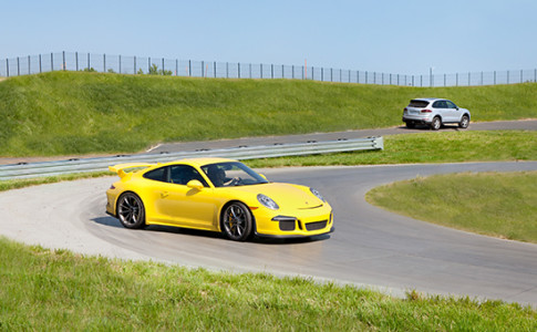 yellow carrera
