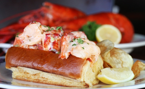Fresh Maine Lobster Roll.jpg