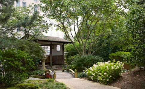 ACVB_Zen Garden.jpg