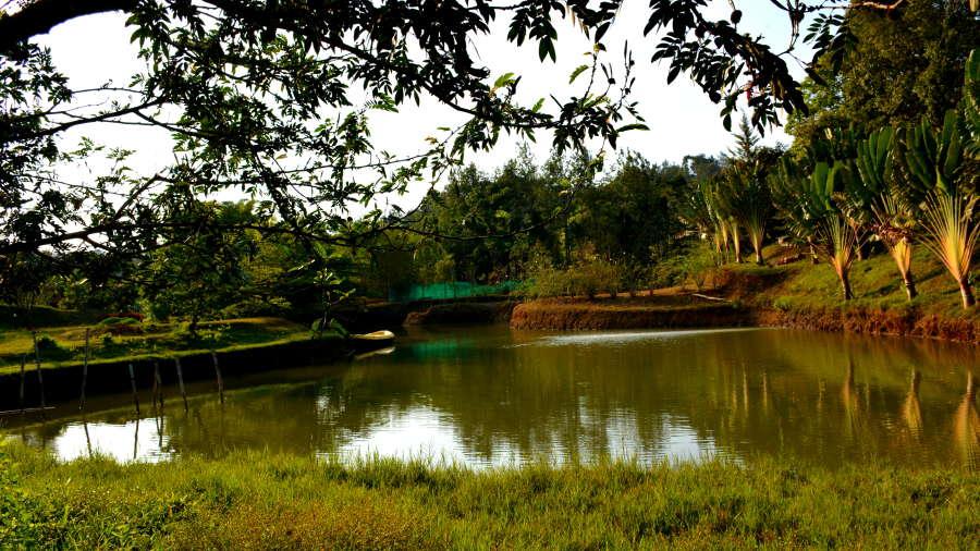 Kadkani Riverside Resorts, Coorg Coorg Lakes 1 Kadkani Riverside Resort Coorg