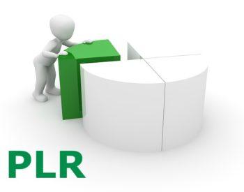 Dataprev – Trabalhadores rejeitam proposta de PLR da empresa