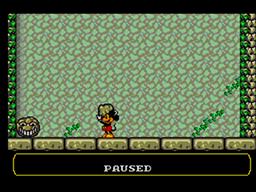 Land of Ilusion Screenshot (12).png