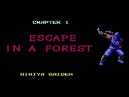 Ninja Gaiden Screenshot (3).png