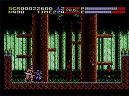 Ninja Gaiden Screenshot (5).png