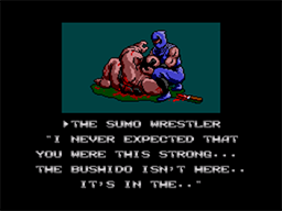 Ninja Gaiden Screenshot (6).png