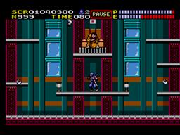 Ninja Gaiden Screenshot (7).png