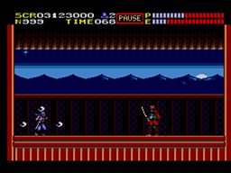 Ninja Gaiden Screenshot (8).png