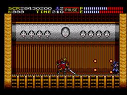 Ninja Gaiden Screenshot (14).png