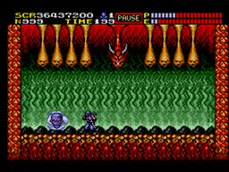 Ninja Gaiden Screenshot (15).png