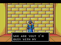 Phantasy Star Screenshot (12).png
