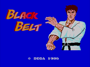 Black Belt Screenshot (1).jpg