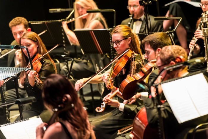 London Musical Theatre Orchestra (Photo: Lidia Crisafulli)