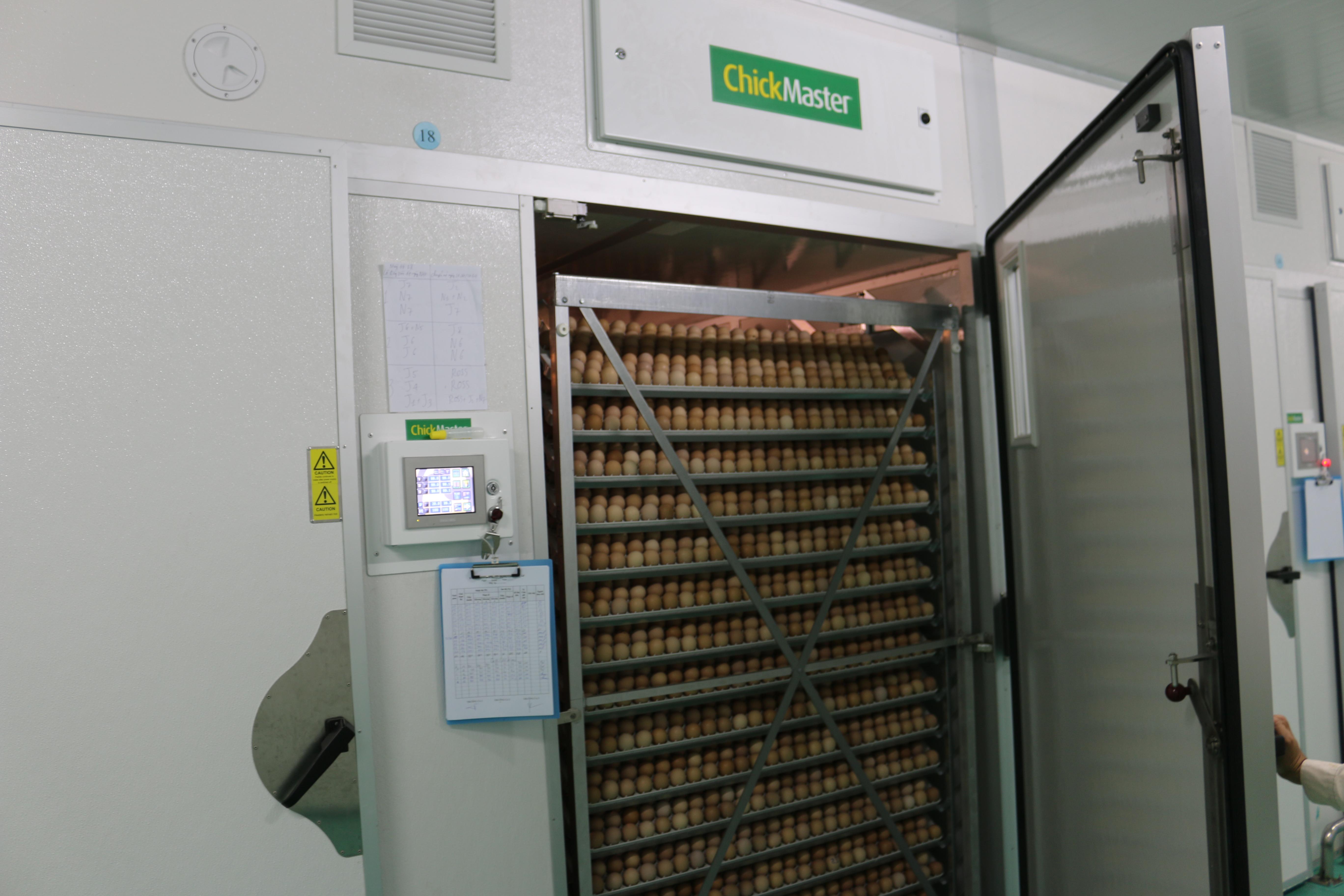 Công nghệ ấp nở hiện đại từ hãng Chick Master của Mỹ