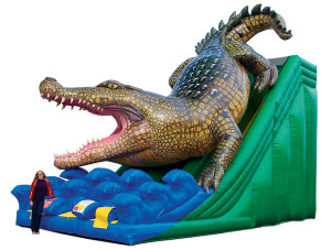 Gator Slide Dual Lane